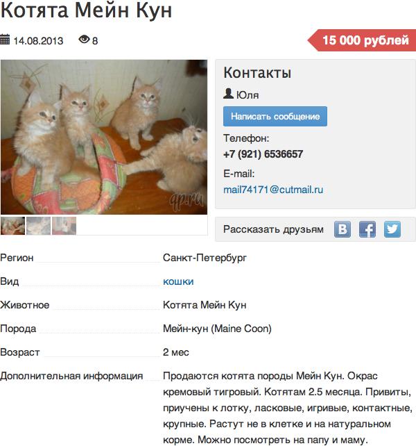Пример объявления, опубликованного на площадке qp.ru